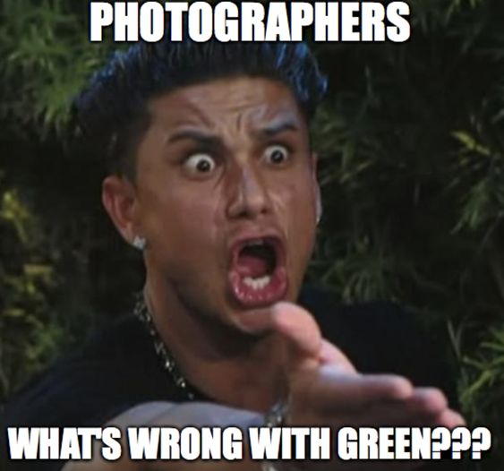 Funny Photography Memes